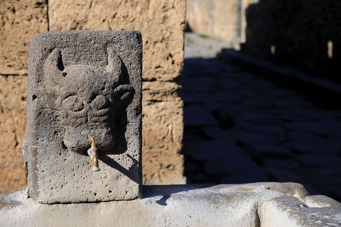 Skip-the-line Half-day Private Tour of Ancient Pompeii Highlights w Native Guide, Pompeya, ITALY
