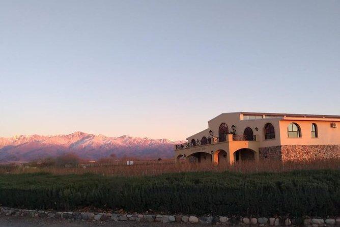 MÁS FOTOS, Valle de Uco, viñedos de altitud
