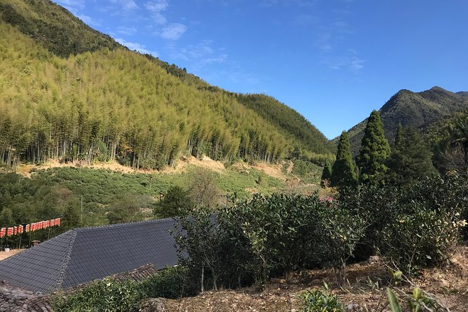Wu Yi Mountain hiking with beautiful nature , history , plus Oolong tea culture learning experience
