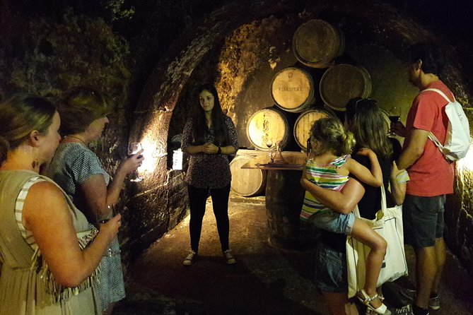 Best wine tasting tour guided by the most professional local guides. Explore the vineyards, taste wines, discover Rioja as no one else. Enjoy the experience on your own private tour.<br><br>For bigger groups up to 8 people please ask for a quote.