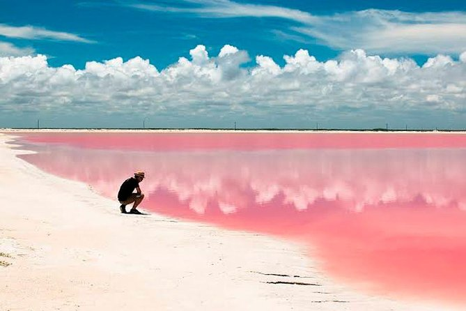 Excursion Las Coloradas from Cancun & Playa del Carmen, Cancun, MÉXICO