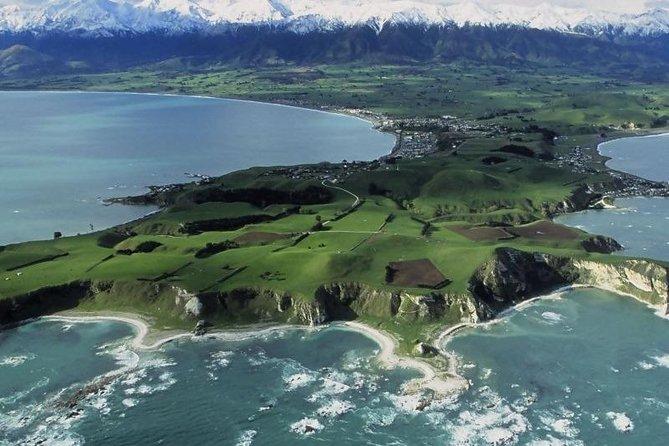 Nadar con delfines en Kaikoura desde Christchurch, Kaikoura, NUEVA ZELANDIA