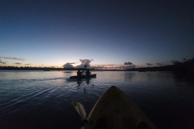 Bioluminescent Bay Night Kayaking Tour 7:30pm | Laguna Grande, Fajardo, ,