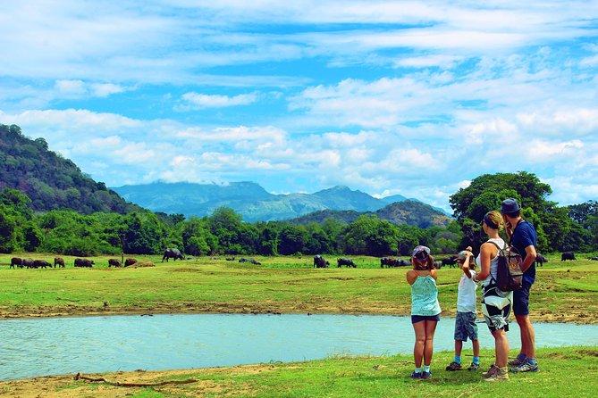 Authentic Sri Lankan Village Experience in Etili Village tour, Parque Nacional Yala, Sri Lanka