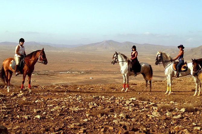Horseback Riding in Fuerteventura, Spain, Fuerteventura, ESPAÑA