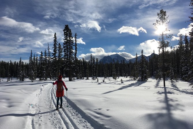 Explore the Rocky Mountains of Canada while learning to Nordic ski in Lake Louise! Enjoy beginner lessons or a refresher over easy terrain, this lesson includes everything from falling down and getting back up to gliding and stopping, with a short tour as well.