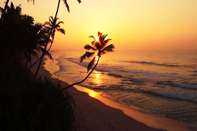 """This unique tour package designed you to enjoy this holiday season in Sri Lanka with your family, Love once and friends. This is 10Nights and 11days Holiday tour with lots of activities and fun. <br>We have designed your Christmas night to celebrate in Negombo, a place where people called """"Little Rome"""" majorities are cholic individuals living in Negombo. There are lots of old and new cholic churches around the city to explore. <br>Your new year day celebration will be in Colombo where the capital of Sri Lanka. The remaining 4 days you will be spent in Sigiriya, Dambulla, Matale, and Kandy.<br>This is a half board (HB) package (Breakfast & Lunch) with Deluxe accommodations in 3*,4"""" Hotels. <br>Provide fully transportation's including airport pick and drop. Also, you can enjoy a wild safari, Village tour, Taste of local dishes with locals will make your tour unforgettable. <br>"""