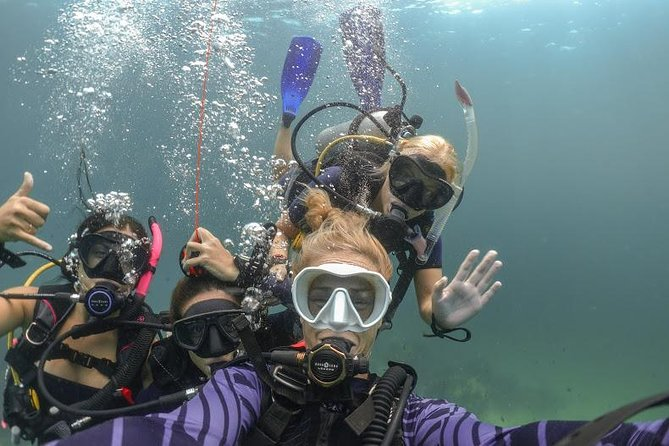 The DSD's are perfect for people who have never tried scuba diving before. You will get to experience why so many people love scuba diving in the great location of Koh Lipe. Lipe has fantastic sea life even right off the beach which makes it such a great place to try out scuba diving.
