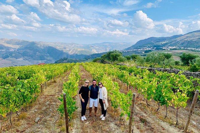 Wine Venture & Boat Trip in Douro Valley, Oporto, PORTUGAL