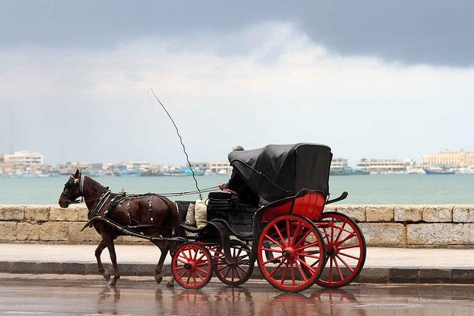 Private Horse Carriage <br>Alexandria Cornish to explore the real life of Egyptian in Alexandria <br>you will see citadel of Qaitbay , panorama of fishing boat , mosques square, the library of Alexandria …etc <br> People Culture and Daily Life