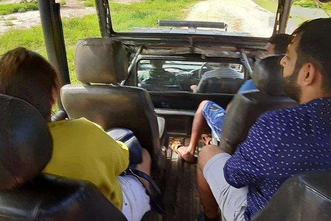 We can arrange day tour covering all the stuffs around Unawatuna to mirissa<br>Like turtles farm/stick fishing/ kogga lake/ jungle beach/Whales watching mirissa.