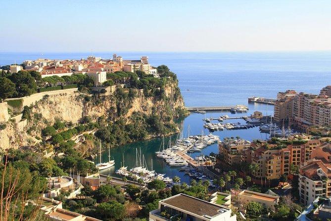 Private Half-day Trip: Eze and Monaco from Nice by Minivan, Niza, FRANCIA