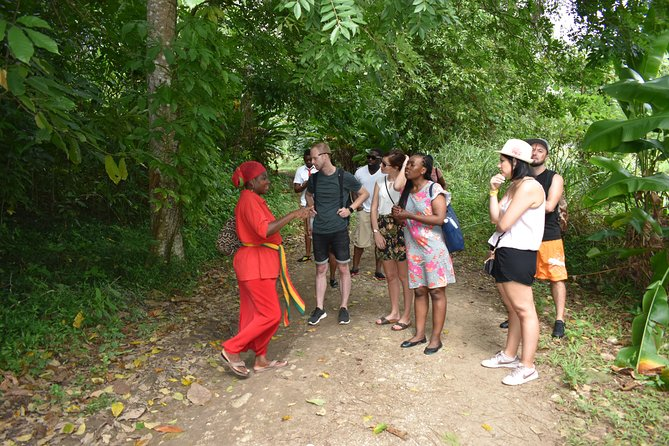 Rastafari Cultural Village Tour & Highlights from Montego Bay & Grand Palladium, Montego Bay, JAMAICA