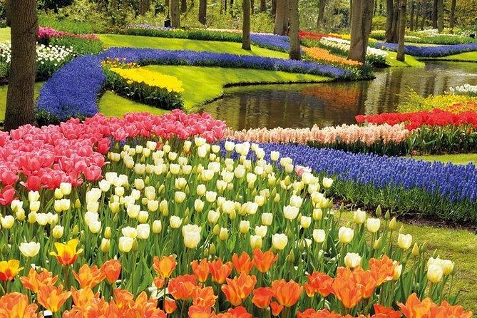 Visit Keukenhof Tulips and Delft with a professional driver and a tour guide. <br><br>Our tour is customizable. Here you can find a general programme of your visit: <br><br>Explore the colorful tulips of Keukenhof and the delicate Delft blue porcelain on this all in all day trip from Brussels to the Netherlands.<br> • Enjoy the fragrances and the colors of 7 million flowers <br> • Visit the most charming town of the Netherlands: Delft <br> • Marvel at the picturesque canals, the city hall, the Old and the New Church <br> • Enjoy the many gardens and beautiful pavilions in Keukenhof <br><br> After the visit, the guide and the driver will drop you off at your hotel or elsewhere in Brussels.