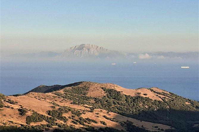 Gibraltar Private Full Day Trip from Marbella or Malaga, Marbella, ESPAÑA