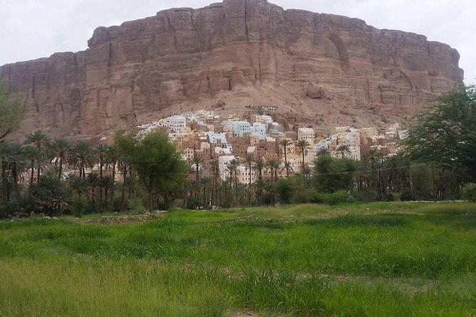 see Yemen adventure tours and Socotra trip,visas yemen, all tour,yemen tours Holidays,discver Yemen