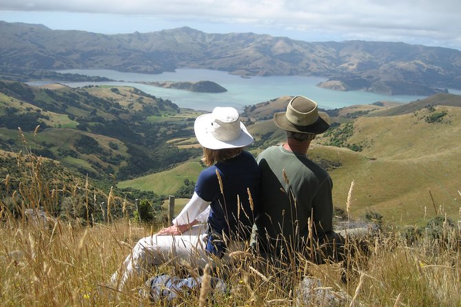 Discover the historic town of Akaroa and the magnificent natural beauty of the Banks Peninsula on this small group tour from Christchurch. Be amazed by the spectacular views of Akaroa Harbour and the Canterbury Plains on the high scenic drive from Christchurch, visit a cheese factory to taste locally made cheese and explore Akoroa's French influenced streets. You'll have the choice to join a nature and harbor cruise to see the rich variety of marine and bird life or to swim with Hector's Dolphins, the world smallest and rarest dolphins only found in New Zealand waters.
