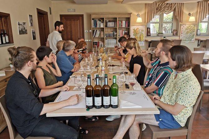 Barolo&Barbaresco wine tour with a local winemaker, Langhe-Roero y Monferrato, ITALIA