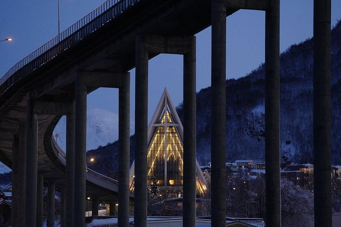 Northern Lights Cuisine Cruise, Tromso, NORWAY