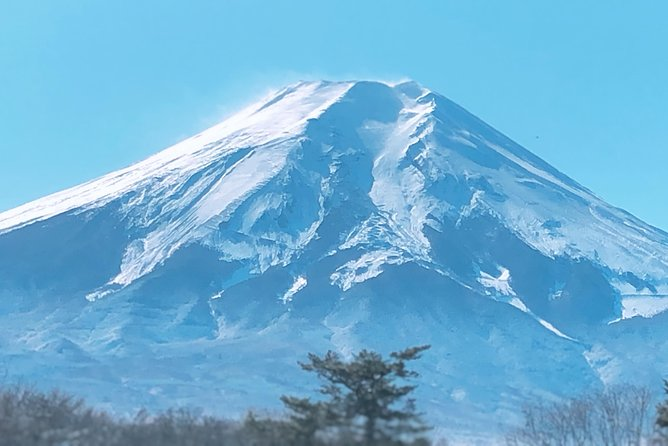 "1 Day Private Mt Fuji Sightseeing Tour Car/Van with ""English Speaking Driver"", Tokyo, JAPON"