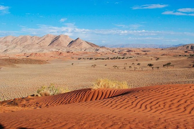 Sossusvlei (Dune 45, Big Daddy Dune & Deadvlei) Tour - 3 Days, Windhoek, Namibia