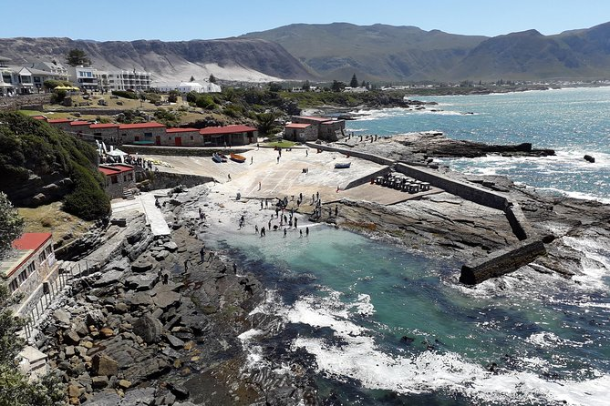 local knowledge, interesting walk<br><br>Professional guide with knowledge of the area as well as whales , fynbos, history & culture etc.