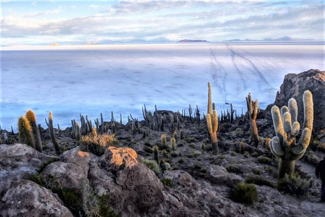 Bolivia's Salar de Uyuni is considered one of the most extreme and remarkable vistas in all of South America, if not Earth. Stretching more than 4,050 square miles of the Altiplano, it is the world's largest salt flat, left behind by prehistoric lakes evaporated long ago.<br><br>