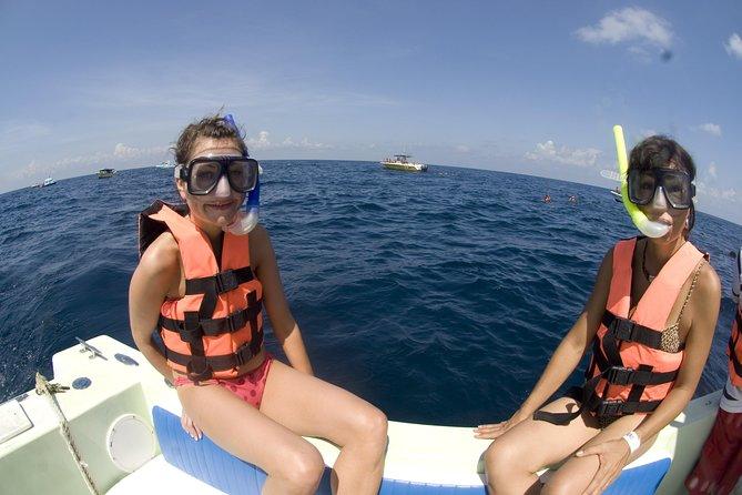 Excursão com tubarões-baleia em Cancun e Riviera Maya: Excursão ecológica para grupos pequenos, Tulum, MÉXICO