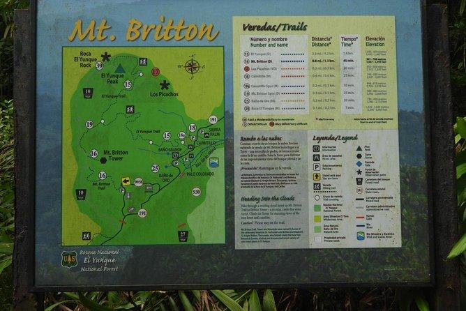 El Yunque National Forest Tour | Nature Walk Adventure, Luquillo, PUERTO RICO