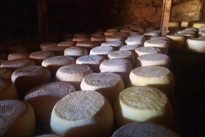 Cheese workshop at the Shepherd's Shelter, La Canea, Greece