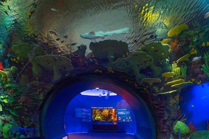 New York Aquarium Value Admission Tickets, Brooklyn, NY, ESTADOS UNIDOS