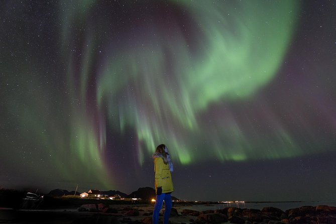 """The perfect tour for Aurora lovers. This is a very dynamic excursion perfect for those who want to """"chase"""" the Northern Lights.<br><br>This 5-hour evening tour offers the experience of a narrative guide and professional photographer, and when the aurora will appear<br><br>he'll be able to capture the magic on camera.<br><br>With the help of your guide, a professional photographer, you will also learn how to set up your camera and tripod (tripods available; let your guide know in advance) to capture the Northern Lights and take some unforgettable photos against a backdrop of the windswept bays, glassy lagoons, and looming peaks of the remote Lofoten archipelago.<br><br>All the pictures taken by us, will be sent the day after without any additional cost"""