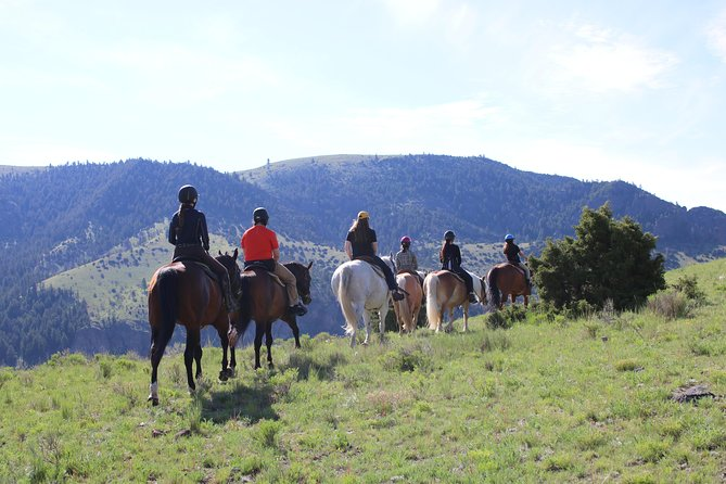 For a truly authentic western experience, nothing beats touring Erik's Ranch from atop a horse. From early settlers to John Wayne himself, people have found there's no better way to see, smell, and experience the Wild West! <br>Enjoy time away from life's stress as you meander the beautiful grounds of Erik's Ranch. Our trail rides offer a truly exhilarating experience, as you are surrounded by some of the most beautiful countryside that Montana has to offer.<br><br>You will also enjoy riding happy, well-cared-for horses that are chosen for their health, beauty, disposition, and friendliness. <br><br>Please note that if there is a rider with special needs, we will gladly accommodate you with a horseback ride in the safety and quiet of our barn. <br>Please call us directly to book!