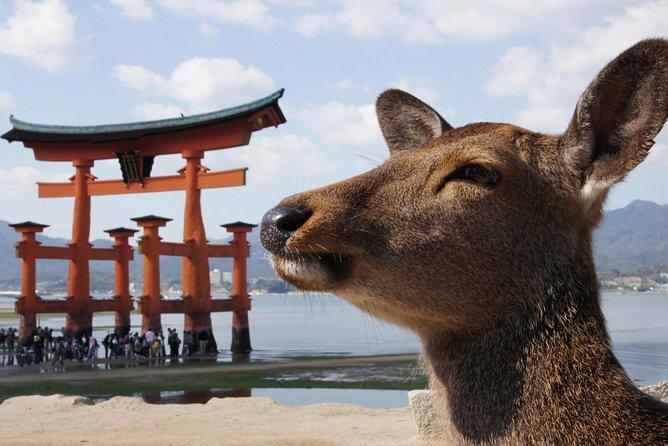 Miyajima Half Day Sightseeing Tour, Hiroshima, JAPÃO