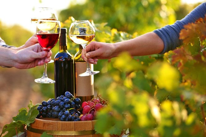 What could be better than enjoying the fresh air of countryside, visiting the cradle of the best wine from Caucasus and tasting beautiful national food with some great wine at the end of the busy week?<br>We offer you:<br>- Geting out of crowd city; Leave all the stress behind and have fun, enjoy the nature in Gabala region of Azerbaijan<br>- Tasting the different kinds of organic wine with delicious snacks<br>-Buying them with discount<br>-Getting acquanted with the process of winemaking; Observe the creation of wine.
