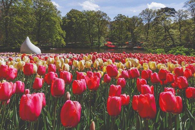 Entrada Evite las colas a los jardines Keukenhof con transporte desde Ámsterdam, Amsterdam, HOLANDA