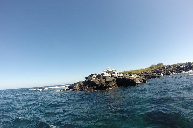 MÁS FOTOS, 12-Days Andes, Coast & Galápagos (from Guayaquil)