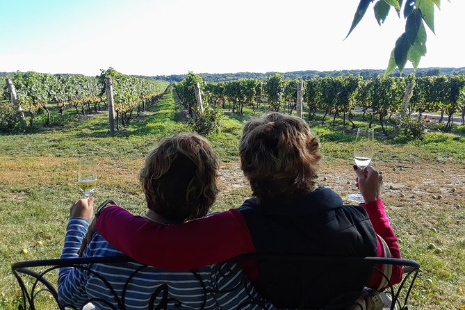 Full-Day Niagara Wine Tour with Sommelier Guide from Toronto -Shared Small Group, Toronto, CANADA