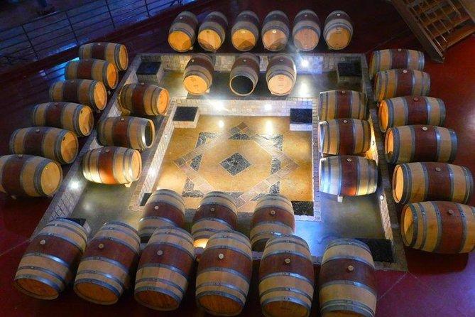 Ruta del Vino: Bodegas de San patricio del Chañar., Cafayate, ARGENTINA