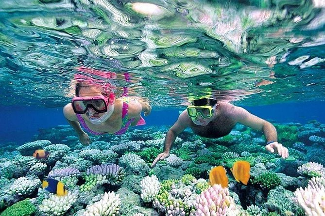 """This 4 island day tour will be the highlight of your trip. Mun Island is the location of the first National Marine protected area, in Vietnam. Scientist believing there are 2,000 species of coral and marine life on the planet, and Mun is home to over 1,500 of them. Wow. Snorkeling in the crystal clear waters, you'll see so many different vibrant corals and fish. Hop on over to Mot Island for a unique experience, we'll have little flaoting bars, big enough for a only one bartender and cooler. Grab a personal floatation device and gather around the """"wet bar"""" while everyone joins together in the fun, followed by an awesomely fresh seafood lunch. At Tranh Island you can hire out some water sport equipment, or just relax on the boat and the final you'll end the day at the Tri Nguyen Aquarium before you head back to the hotel, in case snorkeling wasn't your thing!"""