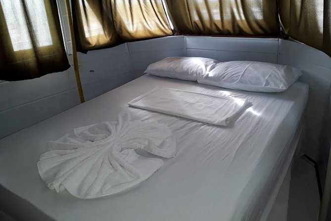 Amazon River Excursion - Orchid Package - 3 days / 2 Nights, Manaus, BRASIL