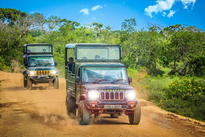 Half Day Safari at Yala National Park with Lunch, Kandy, SRI LANKA