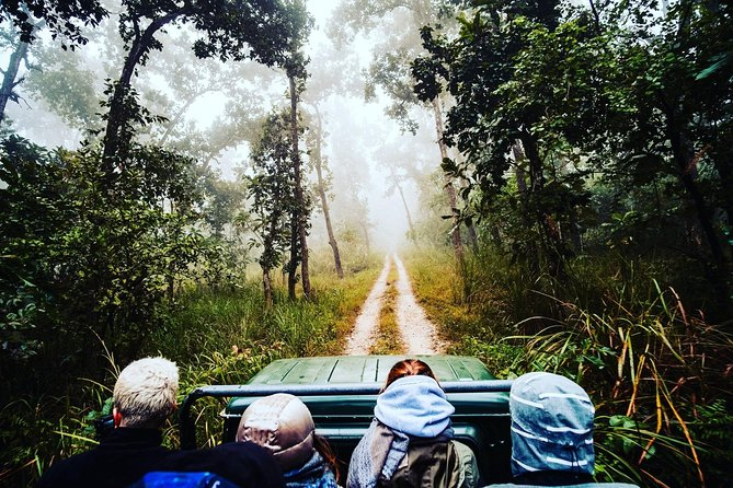 Chitwan Jungle Safari tour is one of a great way to explore the wildlife of Chitwan National Park by Private Jeep. Chitwan Jungle Safari is one of the most popular adventure tours for those who are willing to see wild animals, green forest and flat landscape of Nepal. Elephant ride in Chitwan is also a popular activity. You will discover a lost world of towering trees and twisting vines, of prehistoric rhino and lumbering elephants, crocodile, python and deer; brilliantly coloured birds and if you are lucky – the superb Royal Bengal Tiger. Sharing home with these are other animals like rhesus monkey, grey langur, deer, leopards and wild cats etc. This trip will start early in the morning and you will finish around the evening. With this trip, you will go deeper into the jungle and here you will have more chance to see tigers.