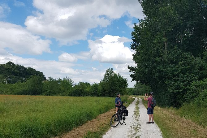 Loire Valley Self-Ride E-bike Tour from Amboise : Amboise & Vouvray vineyards, Loire Valley, FRANCIA