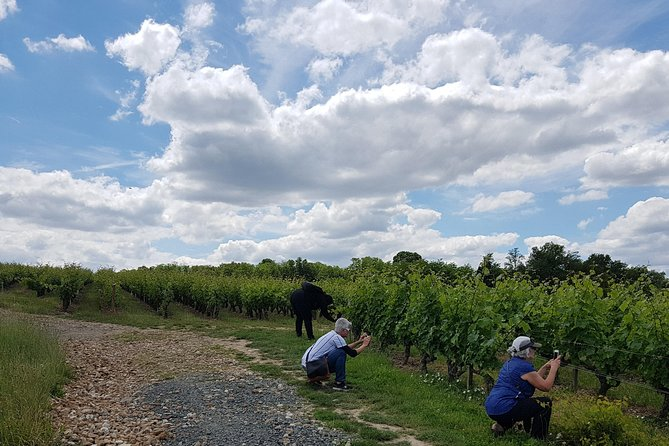 Loire Valley Small Group Wine Tour from Tours, Loire Valley, FRANCIA