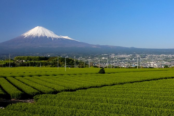 ■Tour Code: Fuji3<br>Fujisan Sightseeing Tour in Fujinomiya<br><br>Day 1<br>10:30 Gather at Shin-Fuji st. ==Taxi <br>11:00~12:00 Tea garden and Iwamoto-yama ==Taxi (Photo)<br>12:20~13:00 Lunch at Omiya Yokocho (Fujinomiya Yakisoba) ==Taxi<br>13:05~13:45 Fuji Takasago Sake Brewery ==Taxi<br>13:50~15:00 Fujisan Hongu Sengen Shrine, Exploring Wakutamaike Pond and Kanda River,Visit Mt.Fuji World Heritage Centre, Shizuoka(photo) ==Walking<br>15:22 Wakutamaike Pond ==Bus<br>15:50 Arrive at Shiraito Falls<br>16:50 Leave Shiraito Falls ==Taxi<br>17:00 BMB/ Arrive at Bayern Meister Beer <br>17:05 Dinner at BMB (or buy food here for dinner)<br>18:20 Stay at Hitsuki Club (without meal) ==Taxi<br><br>* Omiya Yokocho is in front of Fujisan Hongu Sengen Shrine   <br>* Hitsuki Club does not serve you dinner. We will provide you the same grade hotel if they are full.<br><br>Day 2<br>8:30 Hitsuki Club, Lake Tanuki     <br>9:00~10:00 Fuji Kachoen garden park ==Taxi<br>10:15~11:50 Asagiri Food Park on foot (Visit and Tasting at Sake brewery, tea manufacturer) ==Taxi<br>12:00 Asagiri Roadside st. ==Bus <br>12:35 Arrive at Wakutamaike Pond<br>12:40~14:40 Explore Kanda St. Shopping Street (Lunch, Shopping, and Sweets)<br>15:00 Bus from Sengen Taisha Mae ==Bus <br>15:42 Arrive at Shin-Fuji st.<br><br>* Asagiri Food Park is next to Asagiri Roadside st.<br>* We do not visit Bayern Meister Beer (BMB) on Wednesdays because they are closed. <br>* Pick Up: A taxi driver holding your name card will pick you up at the ticket gate in JR Shin-Fuji station and take you to Omiya Yokocho. He explains to the guests that Sengen Taisha Torii gate is the meeting point and the guests meet an English speaking guide there. <br>* The guide will prepare tickets and be on a bus with the guests. The guide will be together until the guests arrive BMB. The guests have meals there (or take away) and go back to the hotel by taxi.<br>* The BMB owner, Mr. S Rager is from Germany and he speaks fluent English and Japane