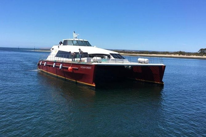 Travel to and from Kangaroo Island in just 30 minutes, we are the faster, more affordable and most comfortable option.