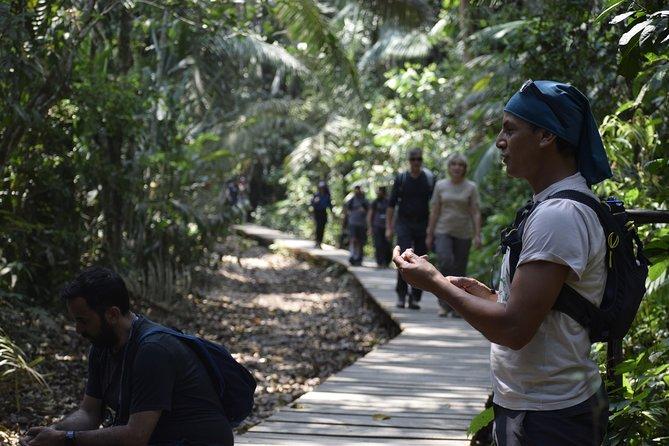 Lake Sandoval National reserve ,hiking and canoeing trip searching for wildlife, Puerto Maldonado, PERU
