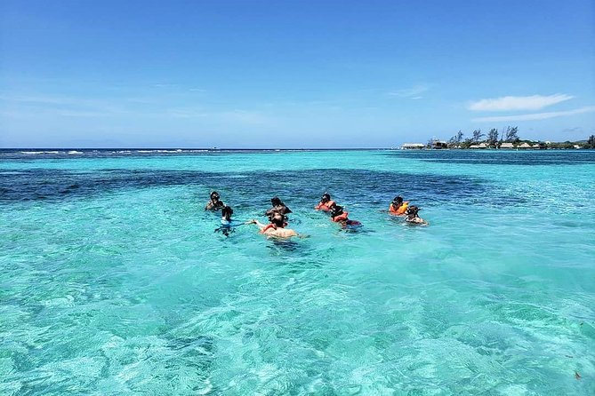 Roatan Shore Excursion: Monkeys, Sloths, and Snorkel Adventure, Roatan, HONDURAS