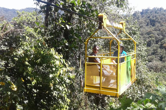 Mindo Cloud Forest -Full day- From Quito, Quito, ECUADOR
